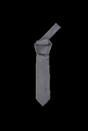 Diagonal Stripe Tie (DG Grey)